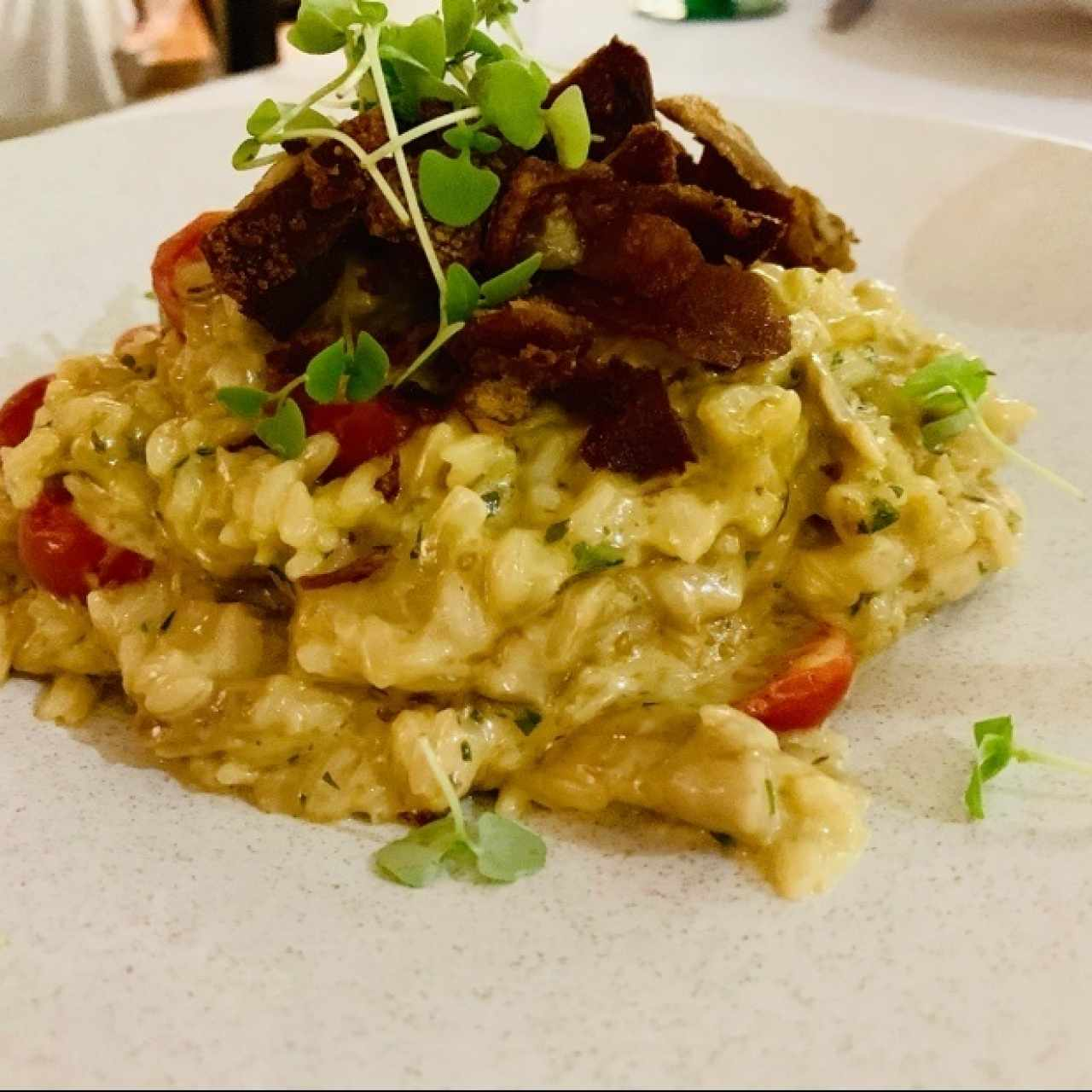 Risotto de Cochinillo