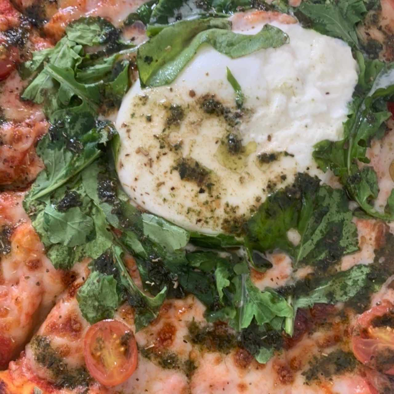 Pizza Gourmet - Pizza Burrata