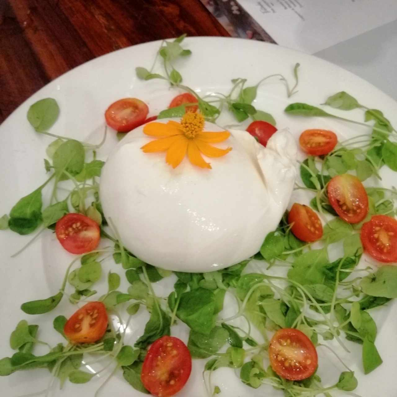 burrata italiana