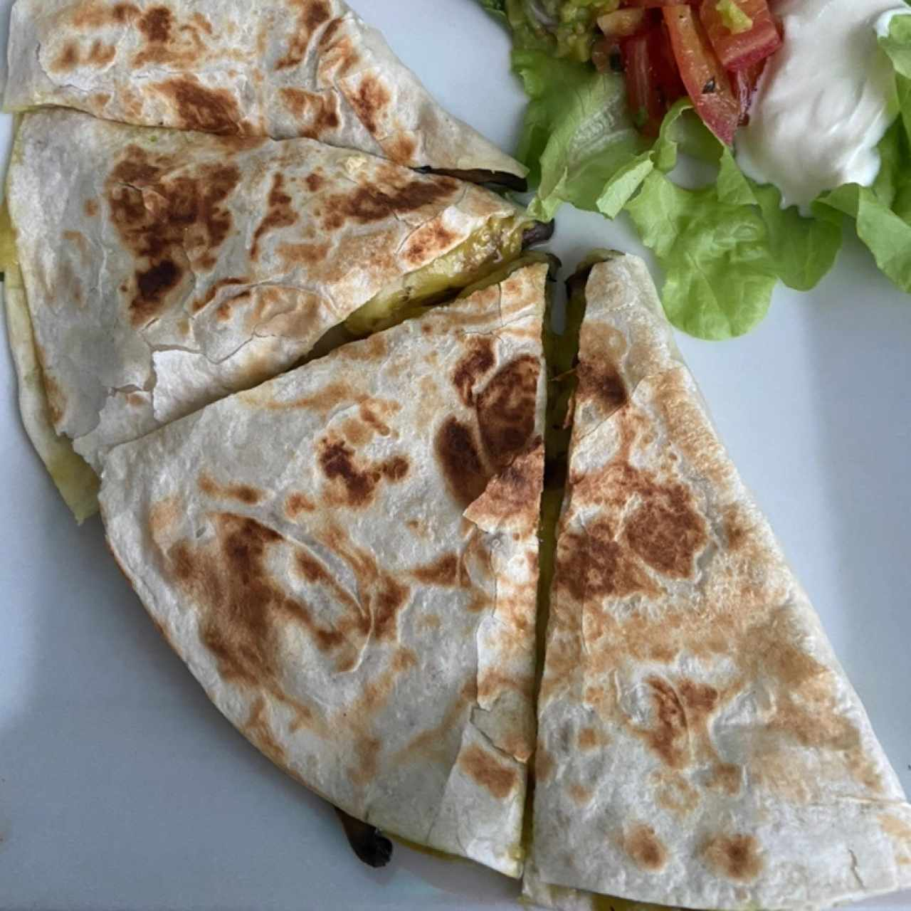 Quesadillas de Hongos y Pollo